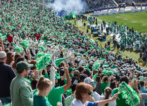 UNT fans cheer on the Mean Green at the Heart of Dallas Bowl (Photo by Adriana Salazar)