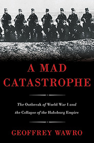A Mad Catastrophe: The Outbreak of World War I and the Collapse of the Habsburg Empire bookcover