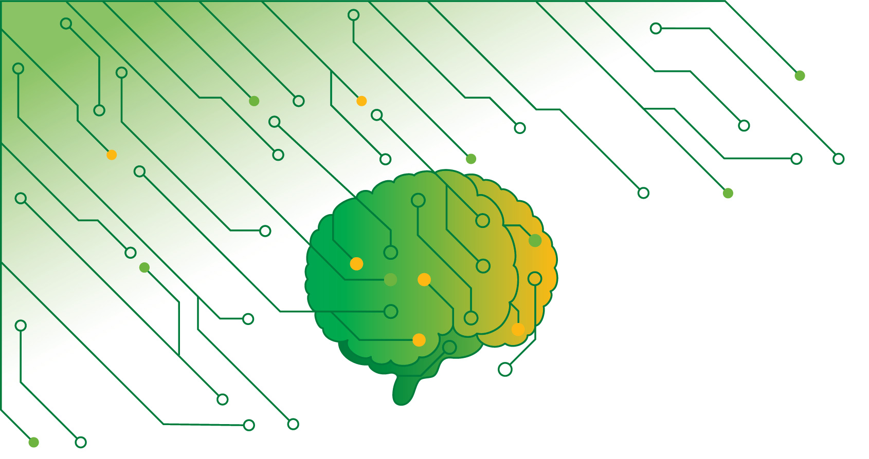 Brain circuit board illustration
