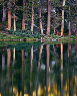 Mirror Reflection, Ten Lakes, by Scot Miller.